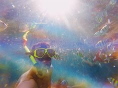 Ma c'é un arcobaleno dentro l'acqua! Questa foto forse rappresenta più di tutte i colori della Thailandia! Che ne pensate?  #thailand #wild #mood #sea #beach #landscape #krabi #intothewild #onthetoad #backpack #backpackers #travel #trip #travel #thailand #adventure #viaggio #thailandia #avventura #natura #selvaggia #travelblogger #nomadedigitale #digitalnomad #savage #viaggio #photography #nature #naturephotography #inspiration #colors Krabi, Thailand Travel, Land Scape, Savage, Celestial, Outdoor, Instagram, Outdoors, Thailand Destinations