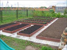 Огород по науке - советы агрономов
