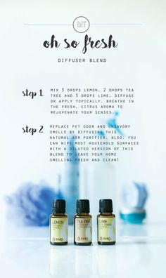 We combined Lemon, Lime, and Tea Tree to create this essential oil diffuser blend, Oh So Fresh! By diffusing this natural air purifier, you can replace pet odor with this delicious, citrus aroma. Got some unsavory smells on the counter? You can wipe most household surfaces with a diluted version of this blend to leave your home smelling fresh and clean!