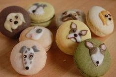 Dog macarons..<3