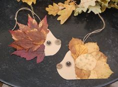 during a walk in the forest and here is a little - Présentation des Plats Holiday Crafts For Kids, Autumn Crafts, Nature Crafts, Diy For Kids, Holiday Decor, Leaf Crafts, Diy And Crafts, Hedgehog Craft, Do It Yourself Projects
