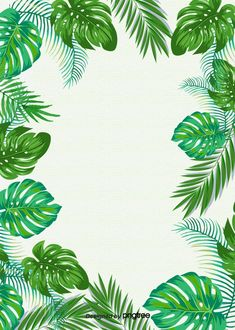 Simple Background Of Tropical Green Plants Tropical Background, Plant Background, Flower Background Wallpaper, Background Images, Scrapbook Background, Background Drawing, Vector Background, Frame Floral, Flower Frame