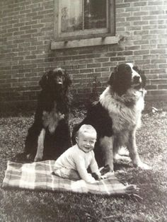 Glenn Gould, age 8 months, with his first dog Buddy (right), 1933