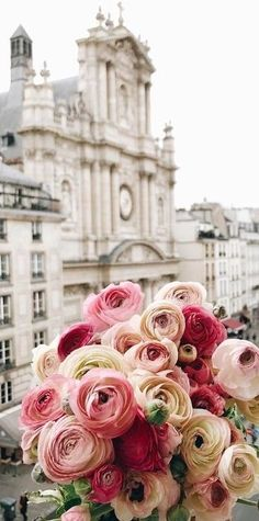 Le printemps fleurit dans les rues de Paris flowers Spring blooms in the streets of Paris flowers Fresh Flowers, Pretty In Pink, Pink Flowers, Beautiful Flowers, Beautiful Places, Ranunculus Flowers, Exotic Flowers, Pink Peonies, Yellow Roses