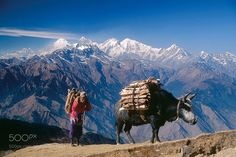 Popular on 500px : Indias Golden Triangle with Nepal by travelntoursindia0