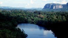 Parque Nacional Natural Serranía de Chiribiquete | Parques Nacionales Naturales de Colombia