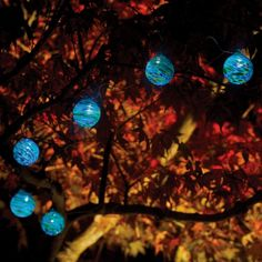 Set of 6 Solar String Lights made of Hand Blown Glass on sale at Earthtech Products. Illuminate your outdoor spaces with beautiful and festive solar powered hand-blown glass string lights Outdoor Garden Lighting, Patio Lighting, Lighting Ideas, Exterior Lighting, Lighting Design, Landscape Lighting, Lighting Solutions, Outdoor Decor, Solar Powered Lights
