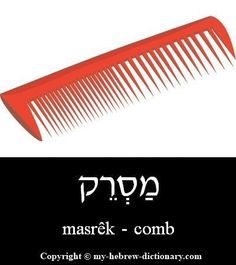 "How to say ""Comb"" in Hebrew. Click here to hear it pronounced by an Israeli: http://www.my-hebrew-dictionary.com/comb.php #learntospeakhebrew #learnhebrew"