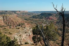 Canyon  Canyon, Texas, the 'Gateway to Palo Duro Canyon,' is a small town in the Texas panhandle that eventually turns into the Palo Duro Canyon. The Palo Duro Canyon (derived from Spanish 'hard stick') is the second-largest canyon in the United States and is thus considered 'The Grand Canyon of Texas.' A U.S. National Landmark, there is evidence that Native Americans inhabited the area because of the water and protection it offered. The Palo Duro Canyon has been open as a public park since…
