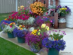 I love bold pops of color!! never grows old for me!!