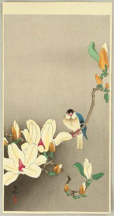 Ohara Koson: Blue Bird and Magnolia -Early 20th Century (before 1923)