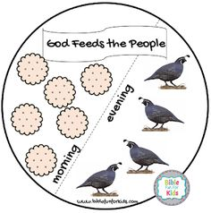 God Provides Manna and Quail for the people lesson, visuals, ideas and printables Toddler Sunday School, Kids Sunday School Lessons, Sunday School Activities, Sunday School Crafts, School Resources, Bible Story Crafts, Bible Crafts For Kids, Bible Study For Kids, Preschool Crafts