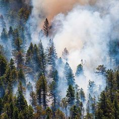 Global climate action can mean that an estimated 6-8 million less acres will be burned by wildfires per year in 2100. This would prevent a doubling of current wildfire activity: www.epa.gov/cira. #2degrees