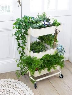 IKEA Plant Hacks Your Green Friends Will Love IKEA Hack for happy plants using RASKOG rolling cart. Turn this simple IKEA rolling cart into an awesome plant display! The post IKEA Plant Hacks Your Green Friends Will Love appeared first on Summer Diy. Raskog Ikea, Diy Garden, Shade Garden, Herb Garden Indoor, Balcony Herb Gardens, Indoor Herbs, Hanging Herb Gardens, Indoor Gardening, Apartment Herb Gardens