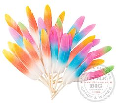 36 x Assorted colored neon feathers