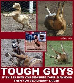 Necks and legs broken... no virility in abuse!  STOP SUPPORTING ANIMAL ABUSE!!!