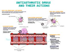 antiasthmatic drugs and their actions