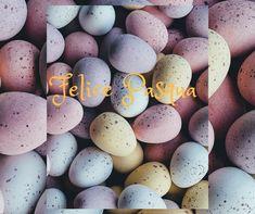 Scopri le nostre proposte pasquali per trascorrere le festività in nostra compagnia! www.thotel.it Easter Eggs, Events