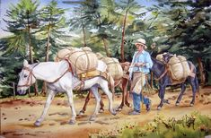 Leg Routine, Colombian Coffee, Tolkien, Love Art, Camel, Horses, Comics, Nature, Painting