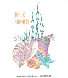 Summer holidays background with sea inhabitants. Hello summer greeting card with seashell and sea star. Doodle vector illustration