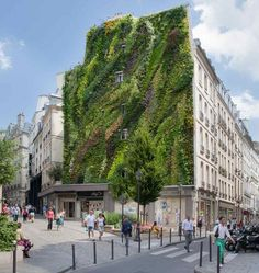 French Botanist Nails It With This Parisian Vertical Garden