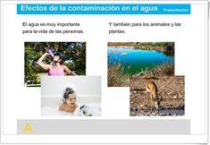"""""""Efectos de la contaminación en el agua"""" (Presentación de Ciencias Naturales de Primaria) Anaya, Natural, Science Area, Interactive Activities, Teaching Resources, Social Science, Second Best, June, Nature"""