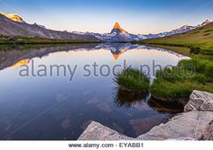 Download this stock image: Sunrise at Lake Stellisee.  On the background, with sunlight, Mt. Matterhorn (Cervino) and Mt. Rosa (on the left).  Switzerland - EYABB1 from Alamy's library of millions of high resolution stock photos, Stock Photo, illustrations and vectors.