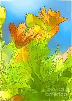 African Daisy 2 - #digital #painting by Debbie Portwood