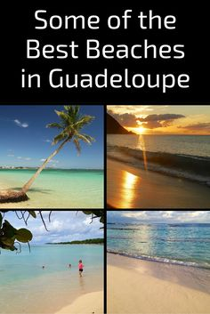 Discover some of the best beaches in Guadeloupe: Photos, map and practical information http://www.zigzagonearth.com/best-beaches-guadeloupe/