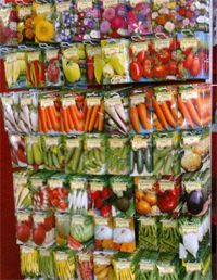 magválaszték Vegetables, Food, Essen, Vegetable Recipes, Meals, Yemek, Veggies, Eten