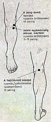 térdfájdalom akupresszúra pontok Mudras, Kuroko, Arthritis, Esl, Martial Arts, Chakra, Health Care, Medicine, Acupuncture