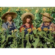 The Hee Haw Girls!