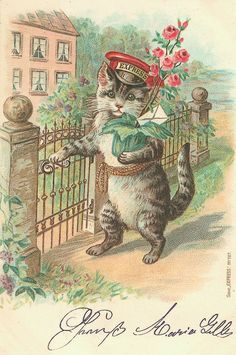 Vintage Cat Card - Express Delivery