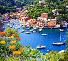 Such a GREAT pic of a hillside down perspective of Portofino, Italy