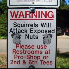 Funny Squirrels Attack Nuts Sign Picture
