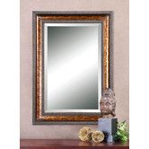 Found it at Wayfair -  Sinatra Framed Mirror