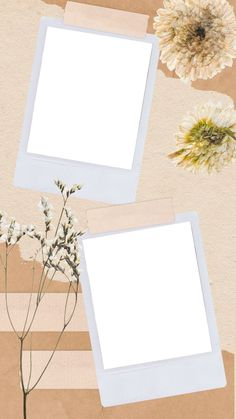 Polaroid Picture Frame, Polaroid Pictures, Polaroids, Framed Wallpaper, Flower Background Wallpaper, Black Wallpaper, Marco Polaroid, Picture Templates, Free Photo Collage Templates