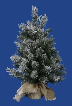 Artificial Christmas Tree - 2 ft. by Gordon Companies, Inc. $48.00. This product may be prohibited inbound shipment to your destination.. Brand Name: Gordon Companies, Inc Mfg#: 30760724. Shipping Weight: 2.00 lbs. Please refer to SKU# ATR25790584 when you inquire.. Picture may wrongfully represent. Please read title and description thoroughly.. Artificial Christmas tree/Jackson Pine/65 lighted frosted green tips/inside use/burlap sack base/made of PVC, metal, and burlap/2...