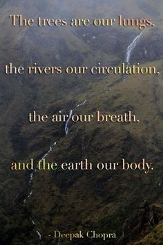The trees are our lungs, the rivers our circulation, the air our breath and the earth our body. ~~ Deepak #Chopra Quotes
