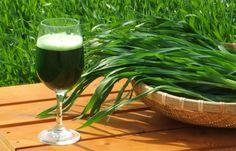 ... zdrowe odżywianie ... zielona żywność ...
