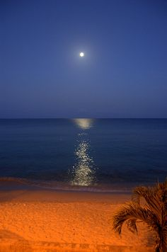 Moonset in St. Croix, US Virgin Islands, Caribbean
