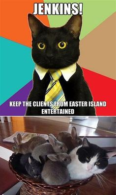 Business cat knows how to keep clients satisfied…