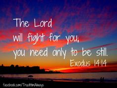 BE STILL because the LORD will fight for you. Exodus 14:14