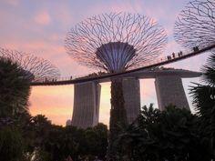 Si te estás preguntando qué ver en Singapur en 3 días, ¡has llegado al sitio correcto! Te cuento los 9 lugares más alucinantes de la ciudad.