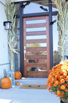 Modern Exterior Door with Multi Point Locks-4 Door lites and 2 ...