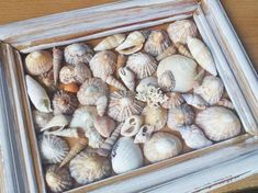Seashell Art, Seashell Crafts, Beach Crafts, Seashell Shadow Boxes, Seashell Projects, Driftwood Projects, Driftwood Art, Shell Decorations, Diy Inspiration