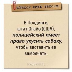 ⚖️ Смешные и глупые законы в открытках 👉 https://factum-info.net/interesnoe/raznoe/324-podborka-glupykh-zakonov #факты #интересныефакты #открытка #закон #юмор #интересно #FactumInfo