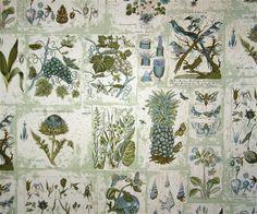 Vintage wallpaper - botanical drawing
