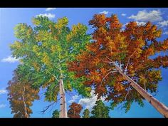 Paint Trees, Short Video, Fall Birch painting 4k Ultra-High Definition - YouTube