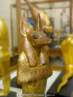 Golden statue of the god Anubis,Ancient Egyptian.